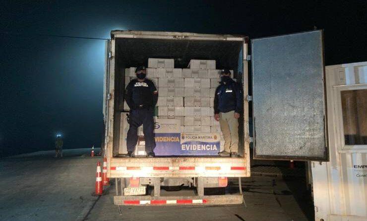 Sernapesca y Armada incautan camión con más de 10 toneladas de merluza austral