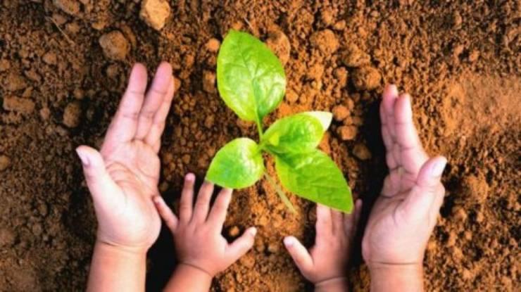 Invitan a establecimientos educacionales a postular a Proceso de Certificación Ambiental 2021