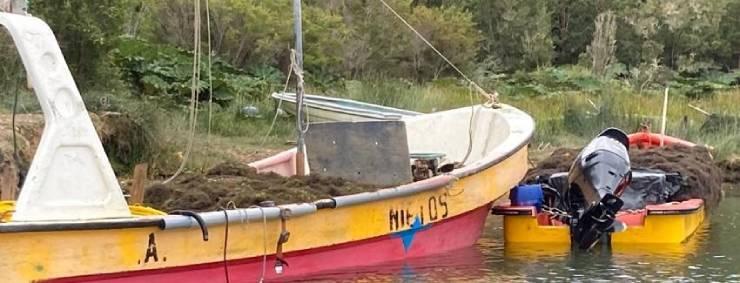 Sernapesca y Armada sorprenden extracción ilegal en reserva marina