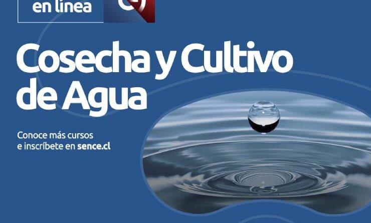 Alianza entre Sence y Claro abren nuevos cursos gratuitos online en diversas áreas.