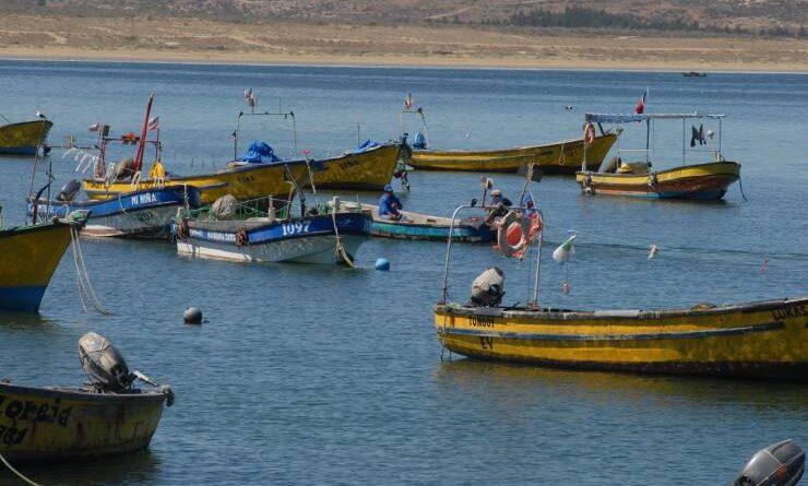 Congreso despacha a ley proyecto que permite a pescadores capturar este año remanentes de cuotas de 2020